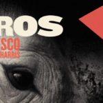 rhinoceros spring banner